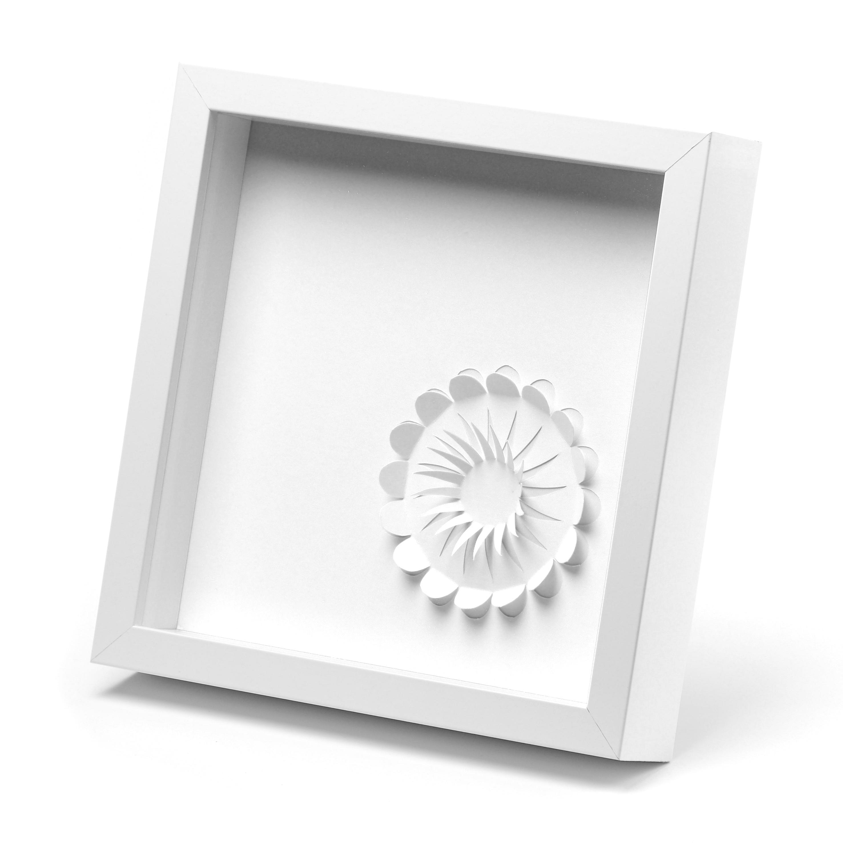 nenufar blanco con marco