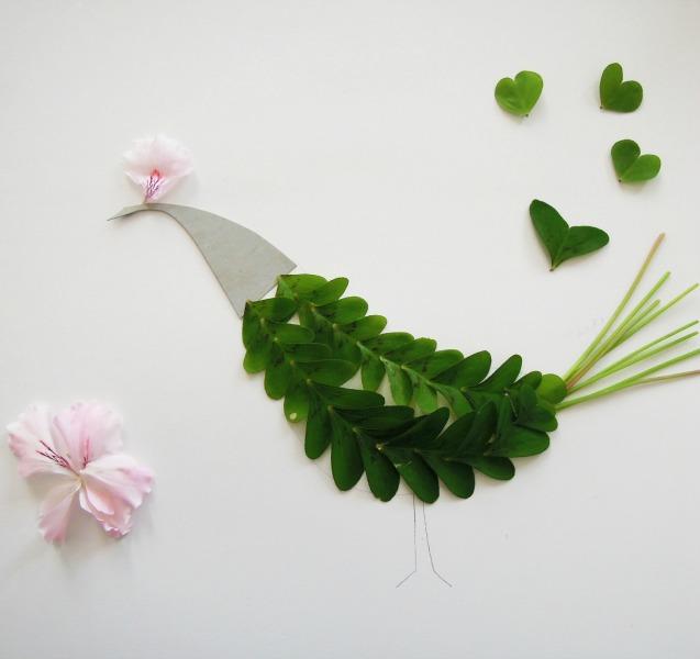 pájaro y geranios